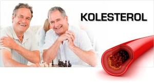 Obat Kolesterol Jelly Gamat Gold G